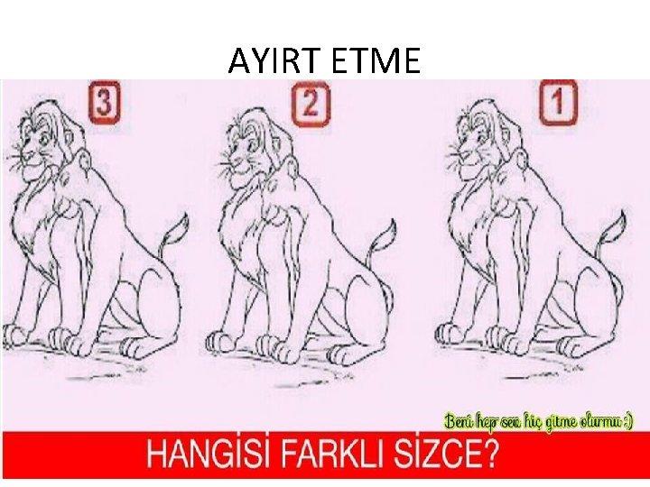 AYIRT ETME 20