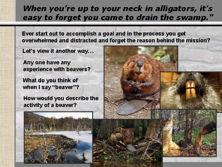 When you're up to your neck in alligators, it's easy to forget you came