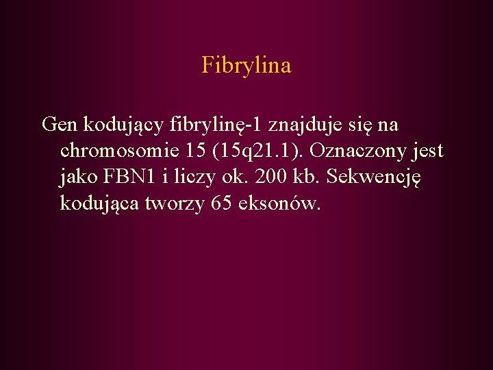 Fibrylina Gen kodujący fibrylinę-1 znajduje się na chromosomie 15 (15 q 21. 1). Oznaczony