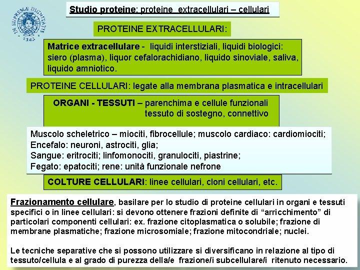 Studio proteine: proteine extracellulari – cellulari PROTEINE EXTRACELLULARI: Matrice extracellulare - liquidi interstiziali, liquidi