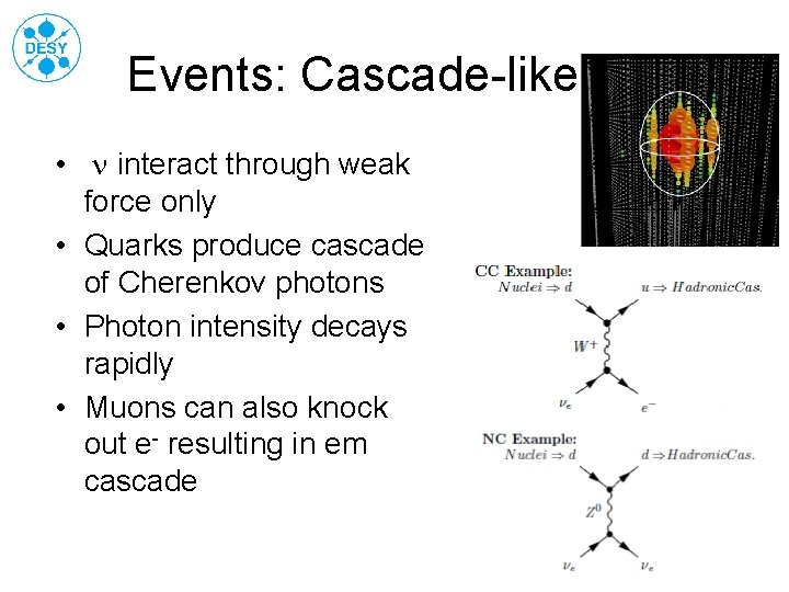 Events: Cascade-like • n interact through weak force only • Quarks produce cascade of
