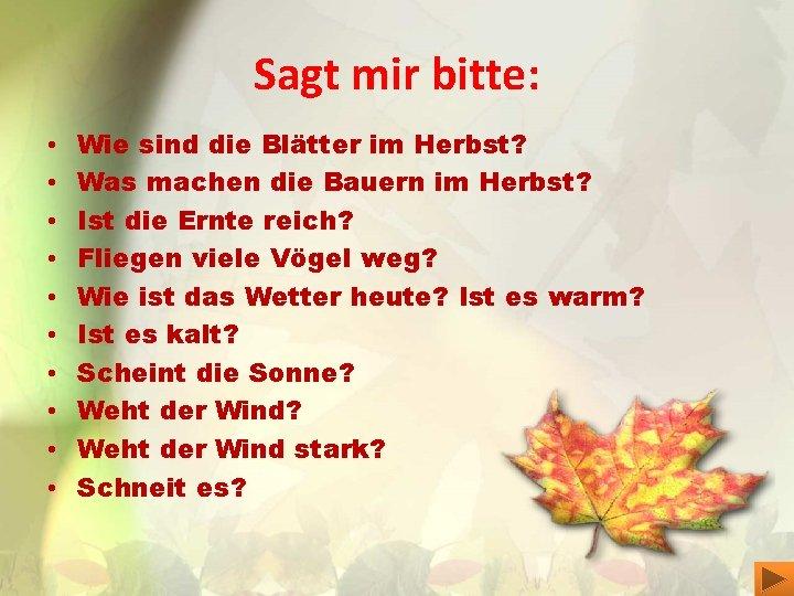 Sagt mir bitte: • • • Wie sind die Blätter im Herbst? Was machen