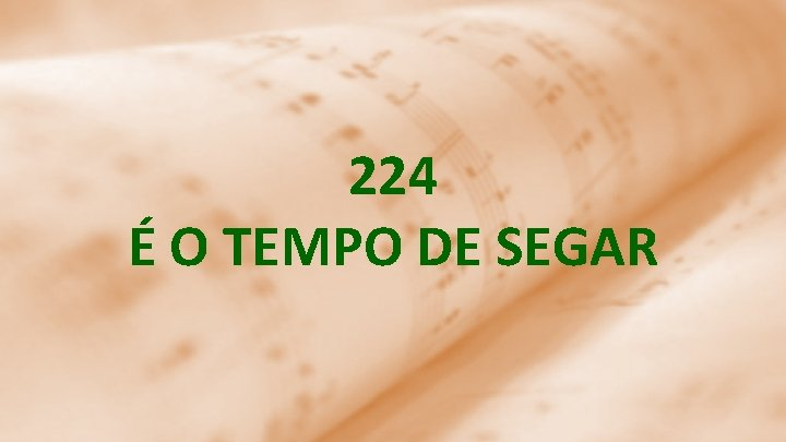 224 É O TEMPO DE SEGAR