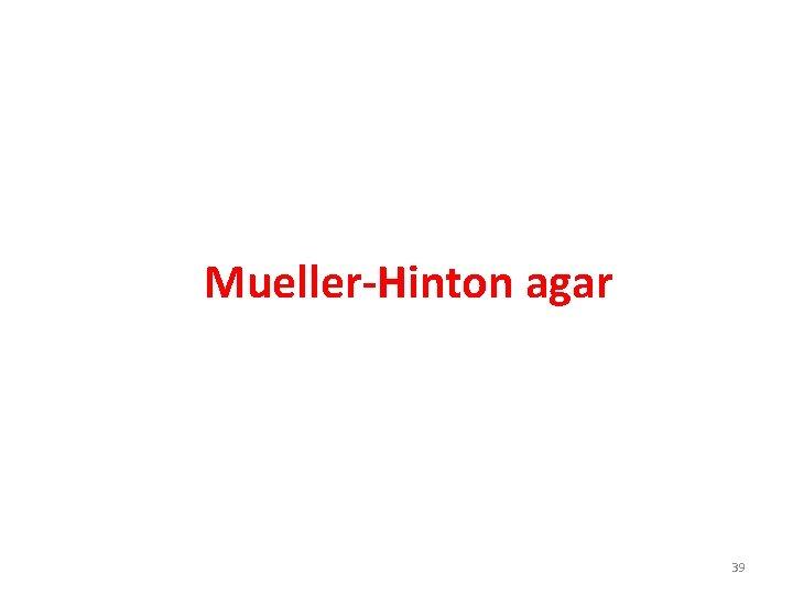 Mueller-Hinton agar 39