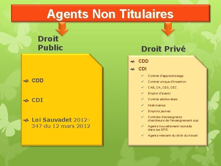 Agents Non Titulaires Droit Public Droit Privé CDD CDI Loi Sauvadet 2012 - 347