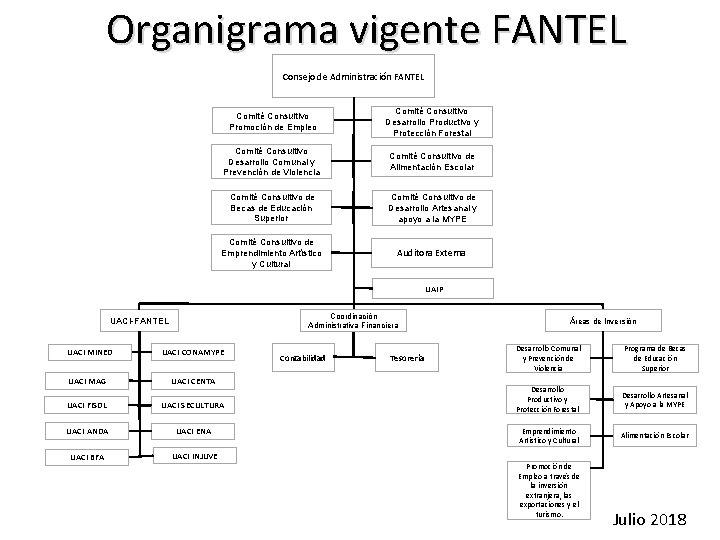 Organigrama vigente FANTEL Consejo de Administración FANTEL Comité Consultivo Promoción de Empleo Comité Consultivo