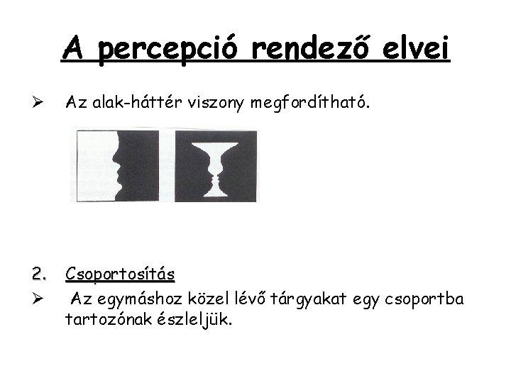 A percepció rendező elvei Ø Az alak-háttér viszony megfordítható. 2. Ø Csoportosítás Az egymáshoz