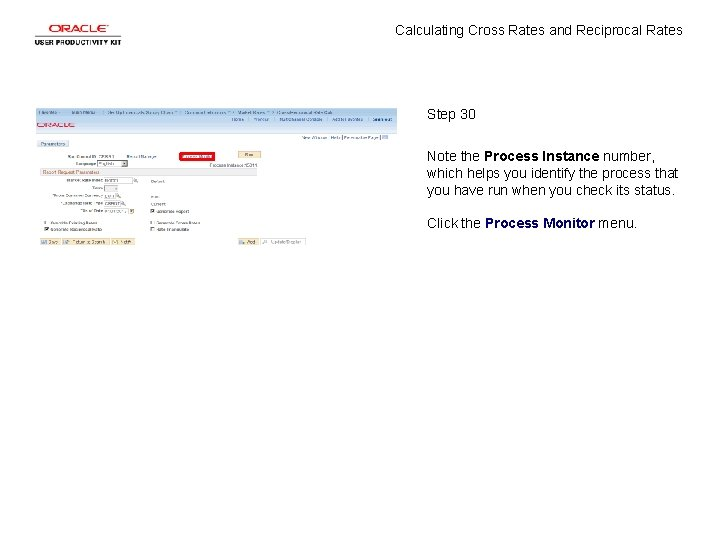 Calculating Cross Rates and Reciprocal Rates Step 30 Note the Process Instance number, which