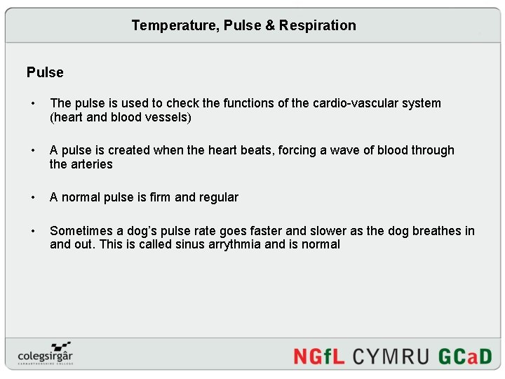 Temperature, Pulse & Respiration Pulse • The pulse is used to check the functions