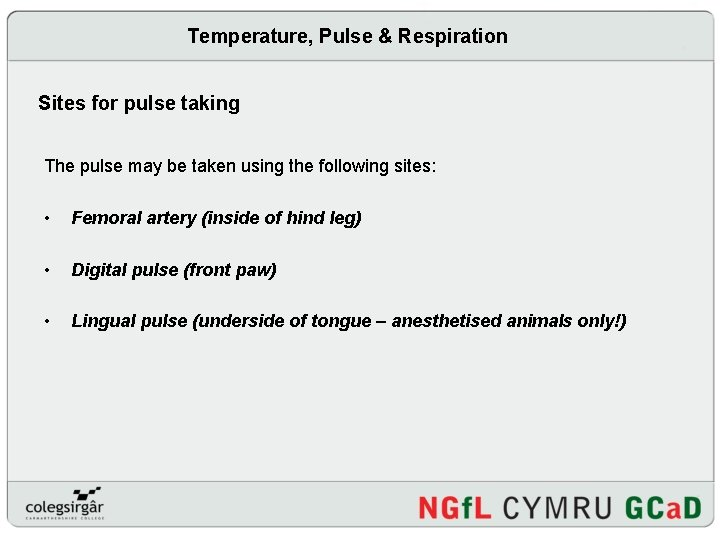 Temperature, Pulse & Respiration Sites for pulse taking The pulse may be taken using