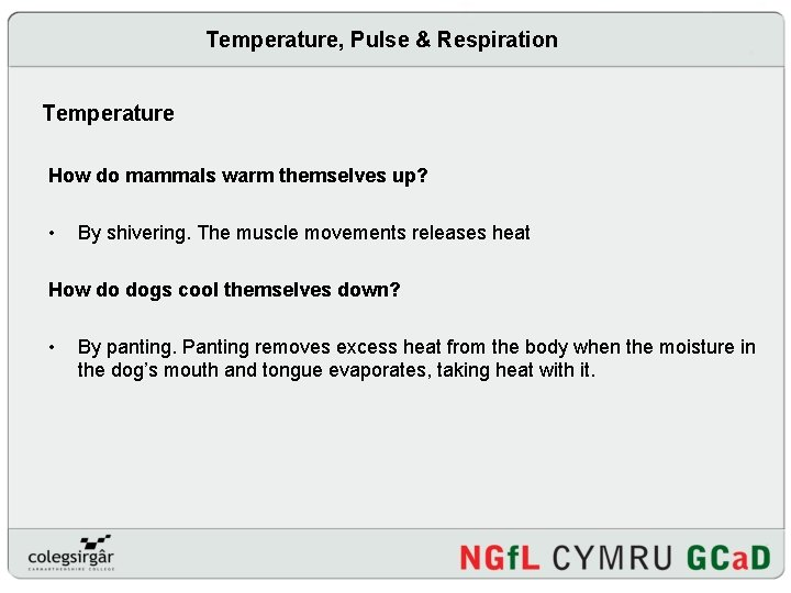 Temperature, Pulse & Respiration Temperature How do mammals warm themselves up? • By shivering.