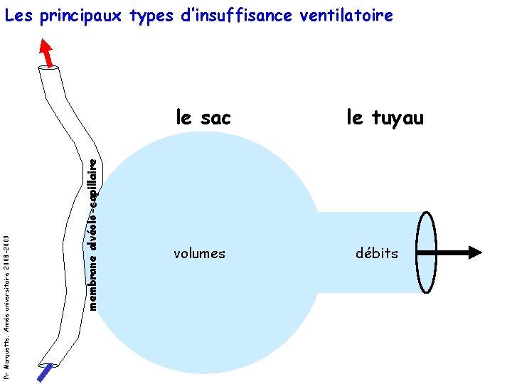 Les principaux types d'insuffisance ventilatoire membrane alvéolo-capillaire Pr Marquette. Année universitaire 2008 -2009 le