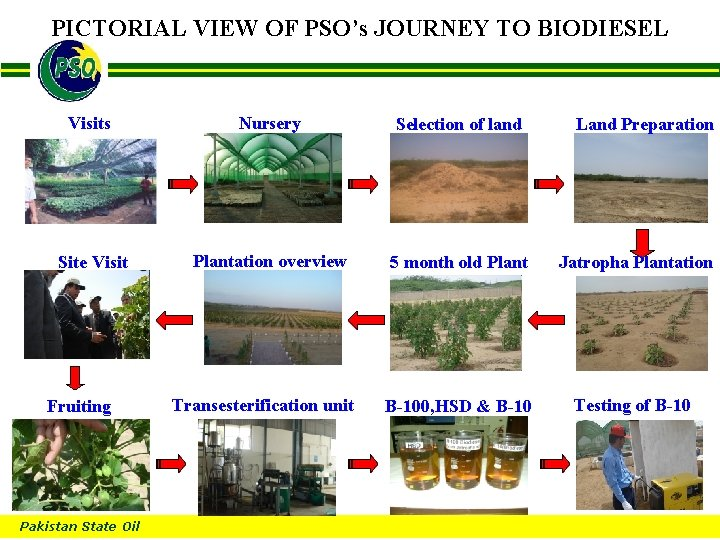 PICTORIAL VIEW OF PSO's JOURNEY TO BIODIESEL B Visits Nursery Selection of land Land