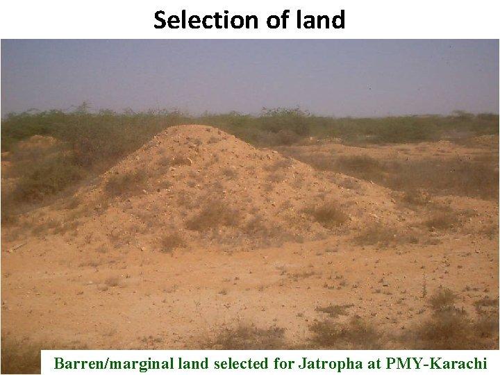 Selection of land B Barren/marginal land selected for Jatropha at PMY-Karachi Pakistan State Oil