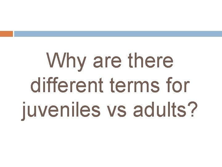 Why are there different terms for juveniles vs adults?
