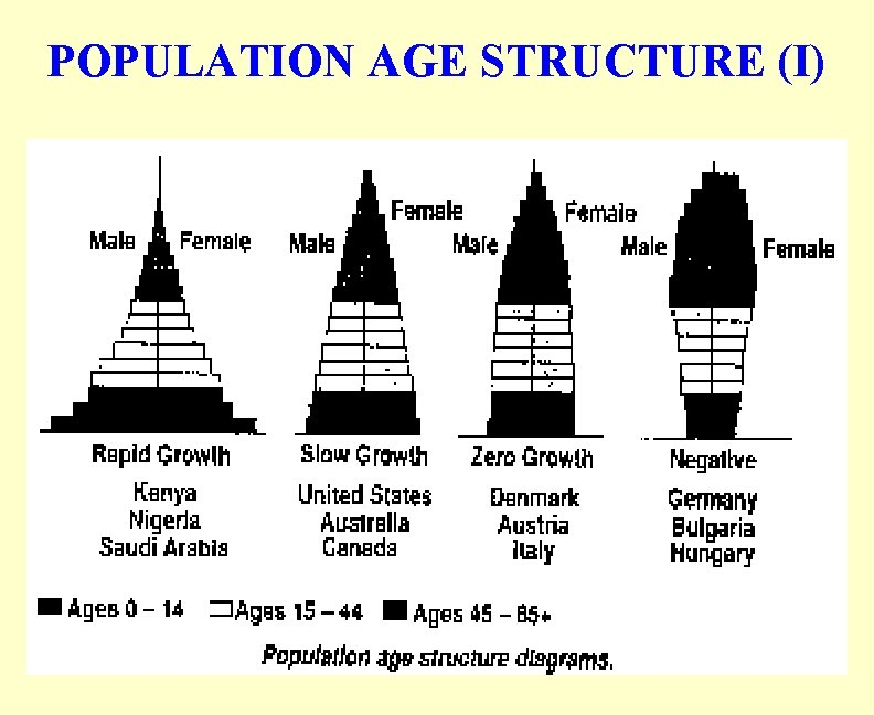 POPULATION AGE STRUCTURE (I)