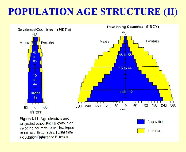 POPULATION AGE STRUCTURE (II)