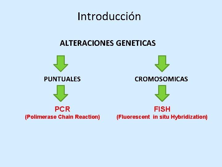 Bioninja Pcr