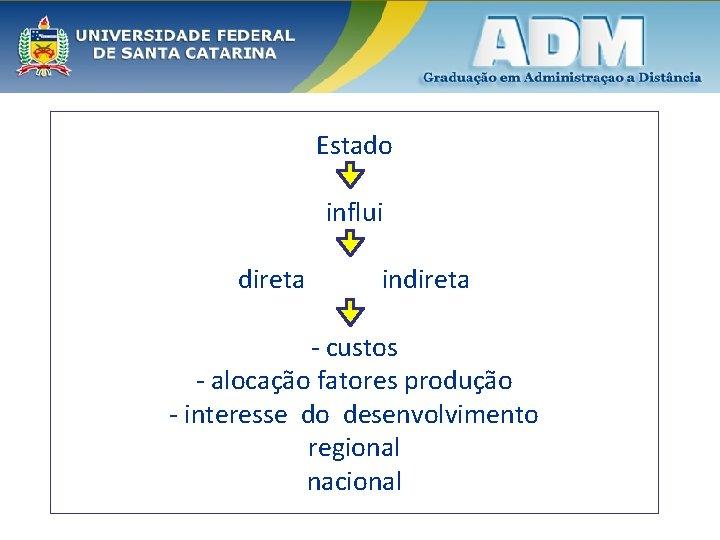 Estado influi direta indireta - custos - alocação fatores produção - interesse do desenvolvimento