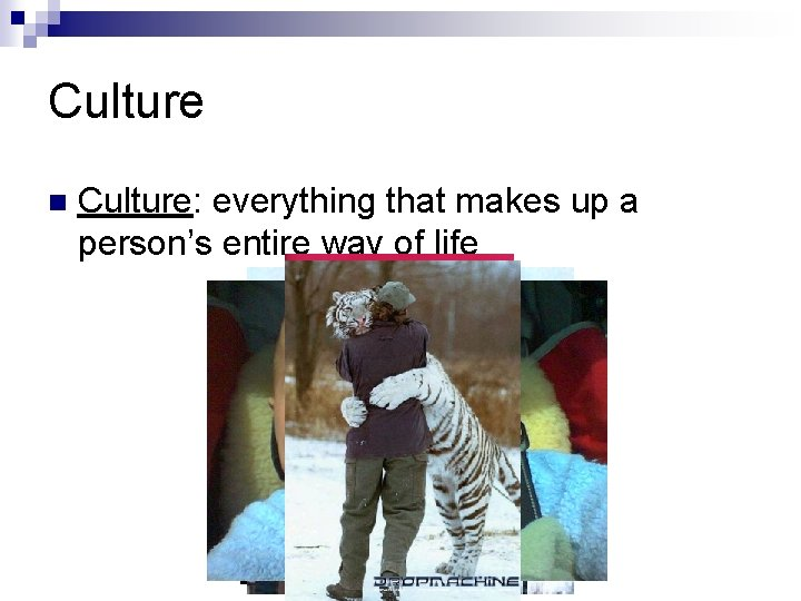 Culture Culture: everything that makes up a person's entire way of life