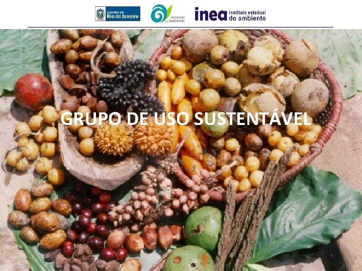GRUPO DE USO SUSTENTÁVEL