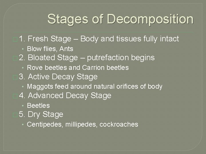 Stages of Decomposition � 1. Fresh Stage – Body and tissues fully intact •