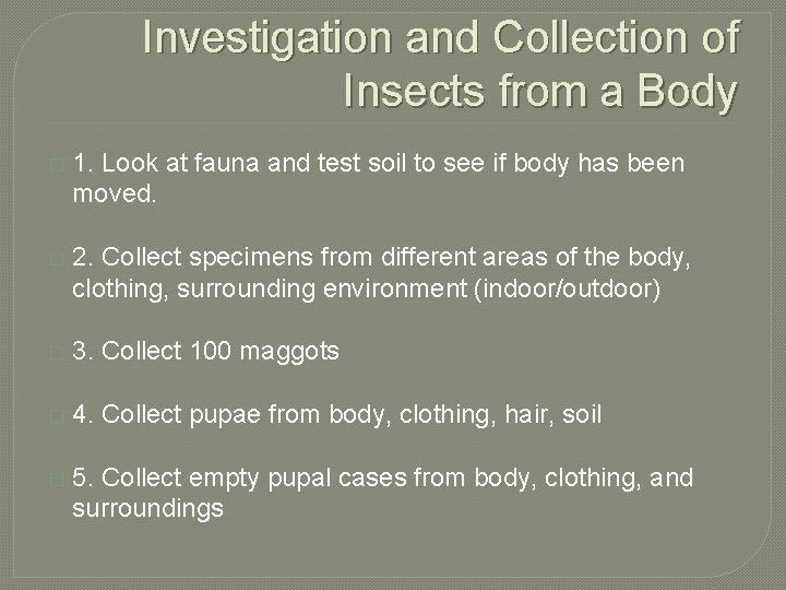 Investigation and Collection of Insects from a Body � 1. Look at fauna and