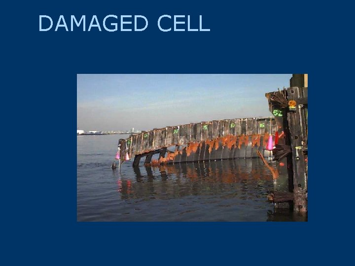 DAMAGED CELL