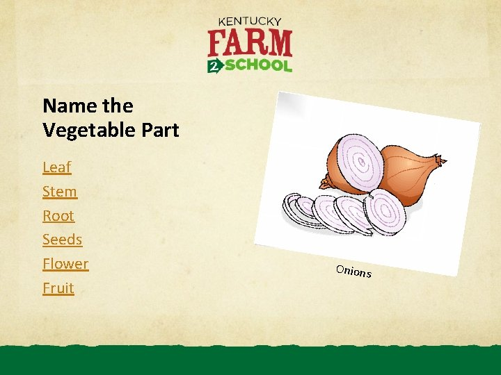 Name the Vegetable Part Leaf Stem Root Seeds Flower Fruit Onions