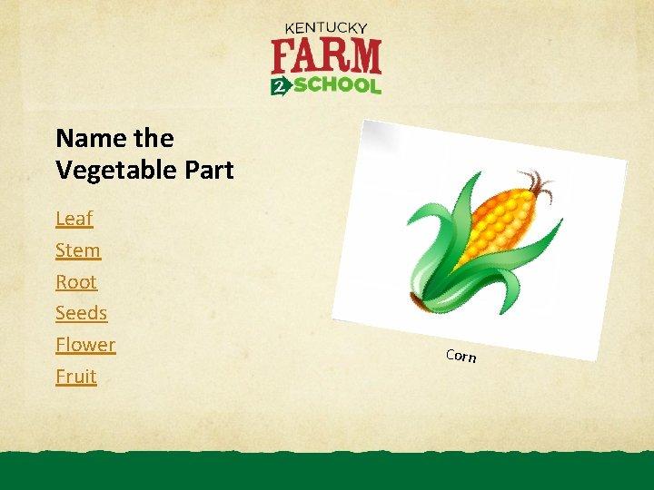 Name the Vegetable Part Leaf Stem Root Seeds Flower Fruit Corn
