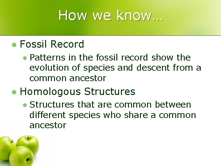 How we know… l Fossil Record l l Patterns in the fossil record show