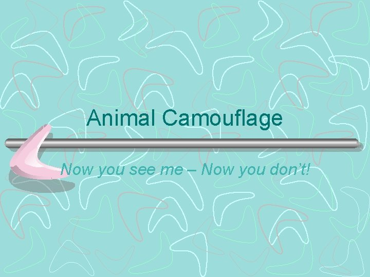 Animal Camouflage Now you see me – Now you don't!