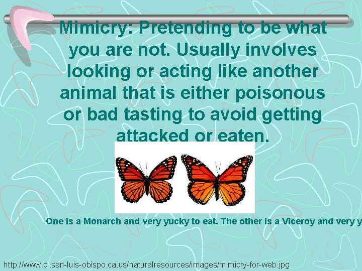 Mimicry: Pretending to be what you are not. Usually involves looking or acting like