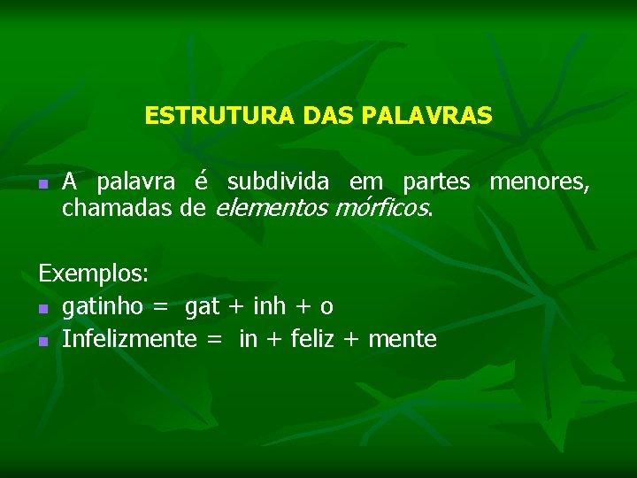 ESTRUTURA DAS PALAVRAS n A palavra é subdivida em partes menores, chamadas de elementos