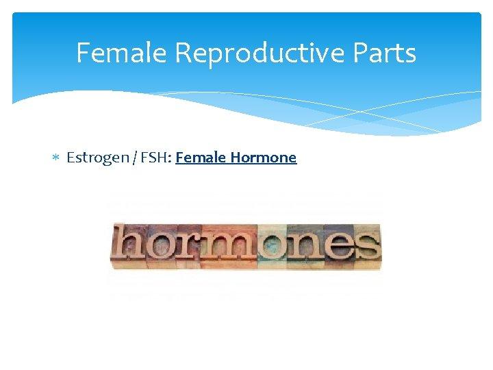 Female Reproductive Parts Estrogen / FSH: Female Hormone