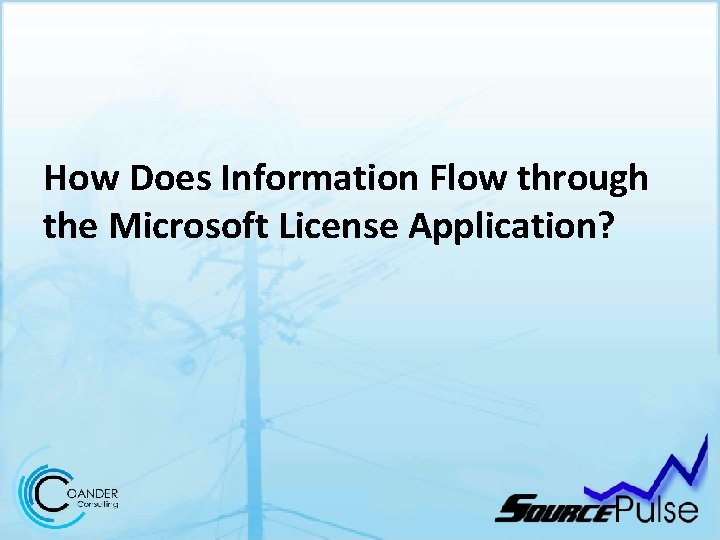 How Does Information Flow through the Microsoft License Application?