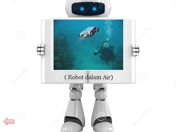 Underwater Robot ( Robot dalam Air)