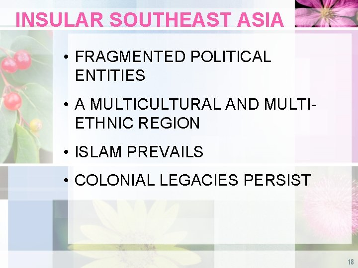 INSULAR SOUTHEAST ASIA • FRAGMENTED POLITICAL ENTITIES • A MULTICULTURAL AND MULTIETHNIC REGION •