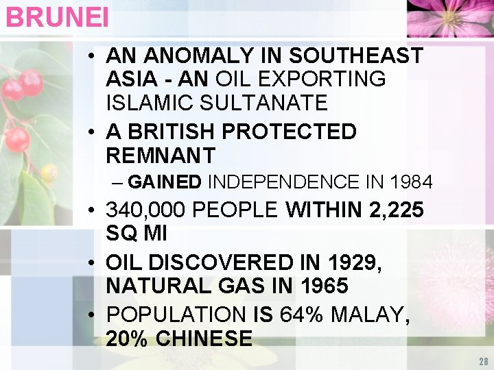 BRUNEI • AN ANOMALY IN SOUTHEAST ASIA - AN OIL EXPORTING ISLAMIC SULTANATE •