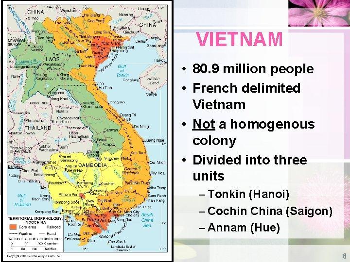 VIETNAM • 80. 9 million people • French delimited Vietnam • Not a homogenous