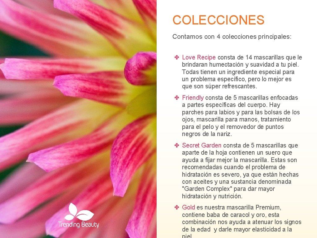 COLECCIONES Contamos con 4 colecciones principales: ✤ Love Recipe consta de 14 mascarillas que