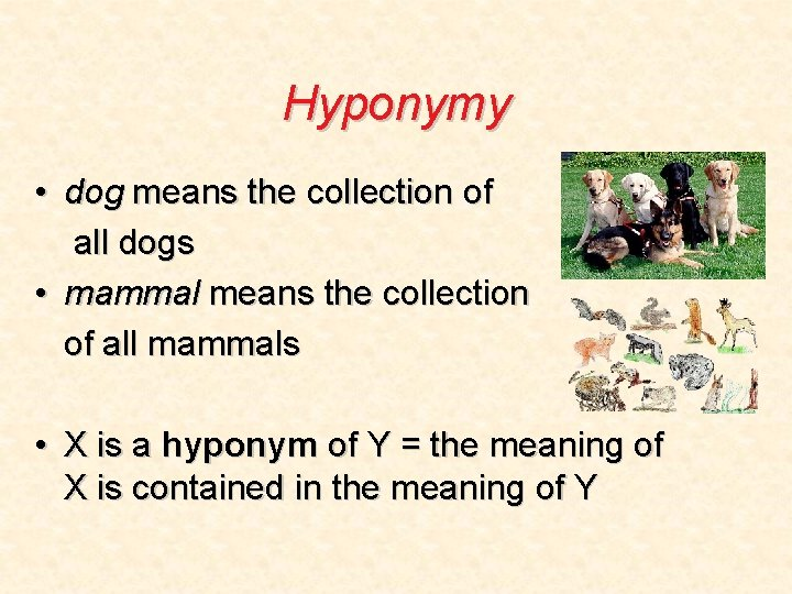 Hyponymy • dog means the collection of all dogs • mammal means the collection