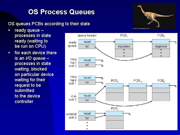OS Process Queues OS queues PCBs according to their state § ready queue –