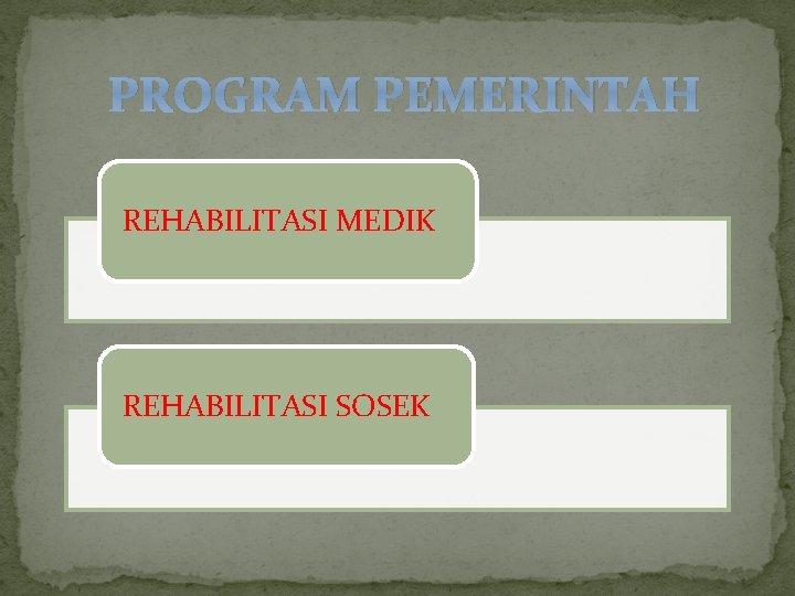 PROGRAM PEMERINTAH REHABILITASI MEDIK REHABILITASI SOSEK