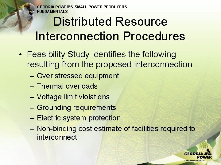GEORGIA POWER'S SMALL POWER PRODUCERS FUNDAMENTALS Distributed Resource Interconnection Procedures • Feasibility Study identifies