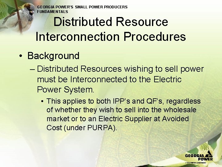 GEORGIA POWER'S SMALL POWER PRODUCERS FUNDAMENTALS Distributed Resource Interconnection Procedures • Background – Distributed