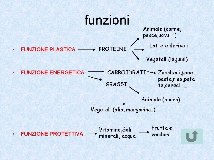 funzioni • FUNZIONE PLASTICA Animale (carne, pesce, uova …) Latte e derivati PROTEINE Vegetali