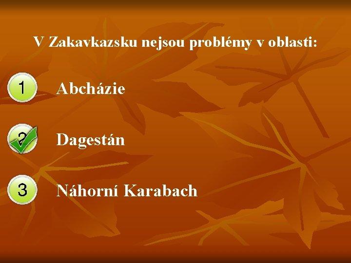 V Zakavkazsku nejsou problémy v oblasti: Abcházie Dagestán Náhorní Karabach