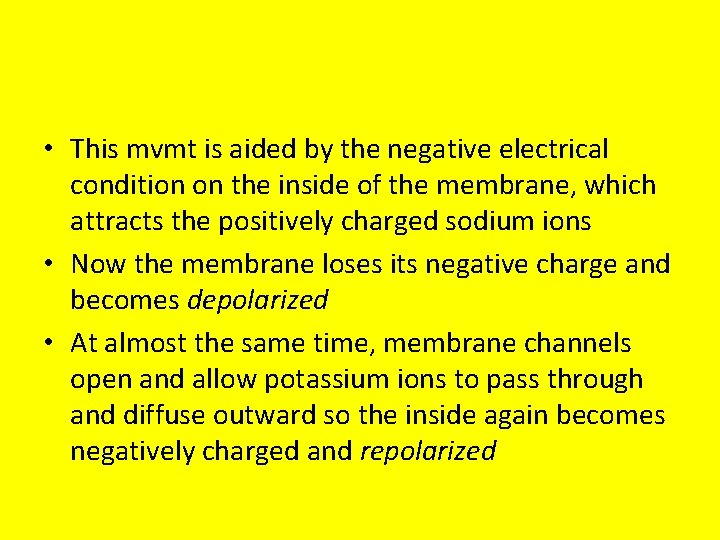 • This mvmt is aided by the negative electrical condition on the inside