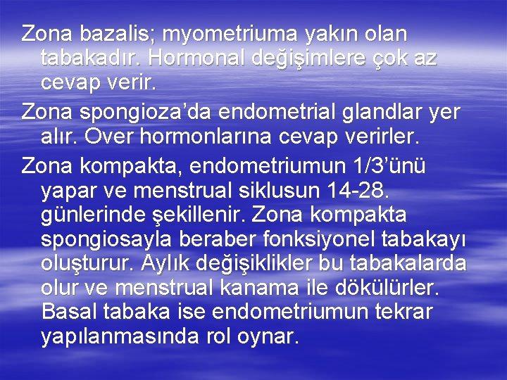 Zona bazalis; myometriuma yakın olan tabakadır. Hormonal değişimlere çok az cevap verir. Zona spongioza'da